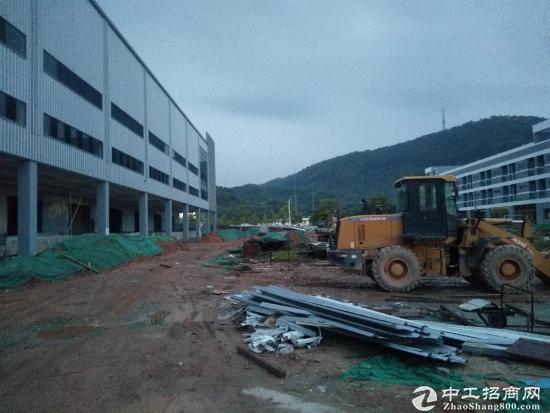 深圳周边大型物流园出租,5000平米起租