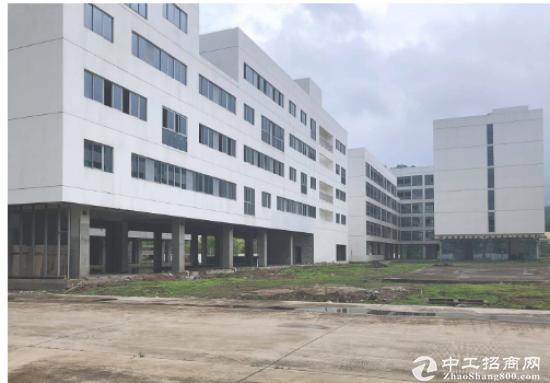 (出租) 大鹏新区 工业园50000平米招租