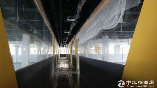 坪山坑梓新出楼上600平,精装修带独立卫生间,报