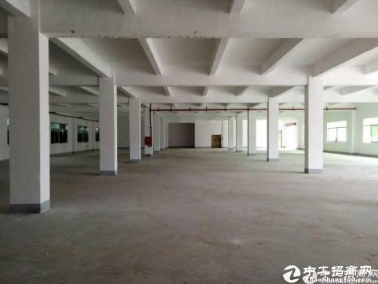 石井太阳村新出独院5420平厂房招租