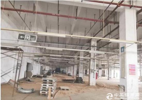 坪山大工业区新出原房东厂房20000平,一楼到7米