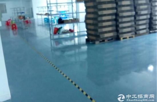 坪山医疗产业园红本厂房4楼分租500平出租 高补贴