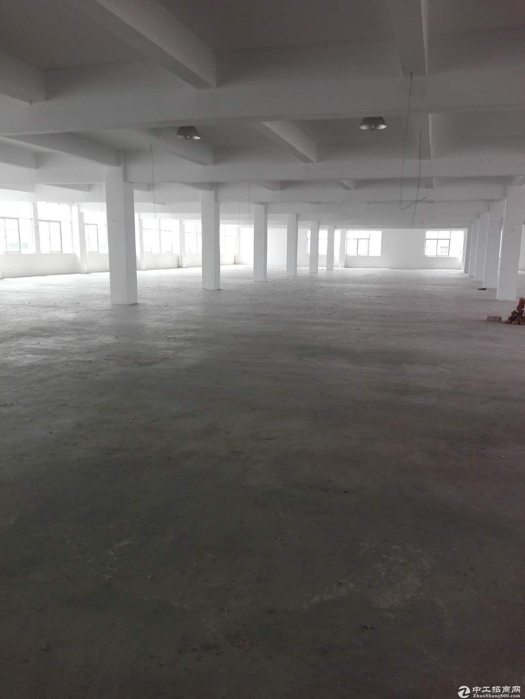 东北塘独立三楼厂房仓库出租1800平,含有办公室,2吨货梯