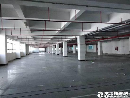 石岩汽车站附近带红本1楼2000平米,厂房招租红