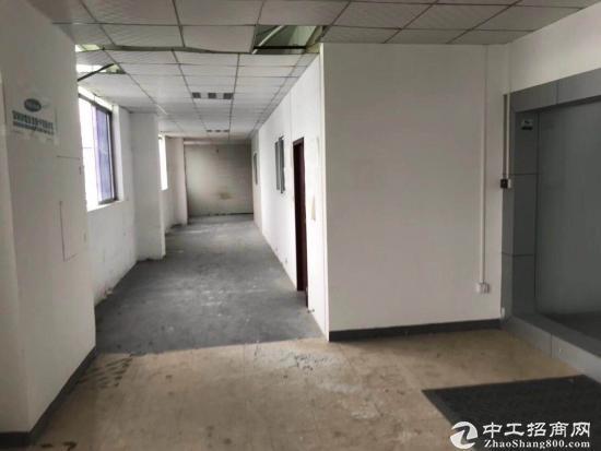布吉丹竹头工业区新出5楼长发450平8000元全包