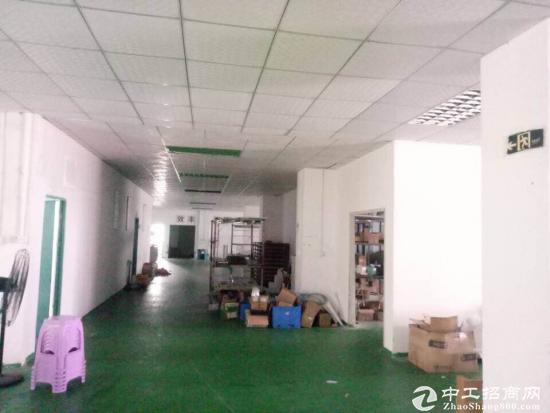 观澜福民独院带红本厂房厂房7000平招租