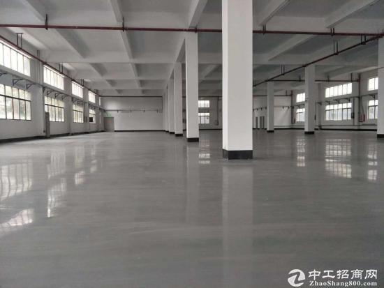 坪山坑梓新出一楼重工业超高厂房1700平方精装出租