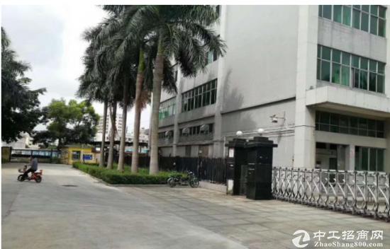 (出租) 房东1300平米精装修厂房招租照片真实有效