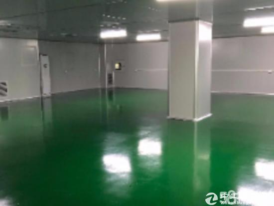 出租龙岗爱联新装修厂房1000平,设施齐全