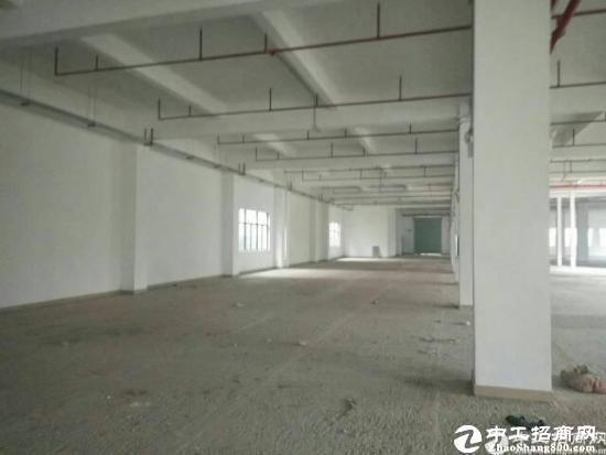 坪山江岭350平一楼标准厂房带装修