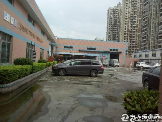 新圩高速附近独院1楼3000平米厂房招租