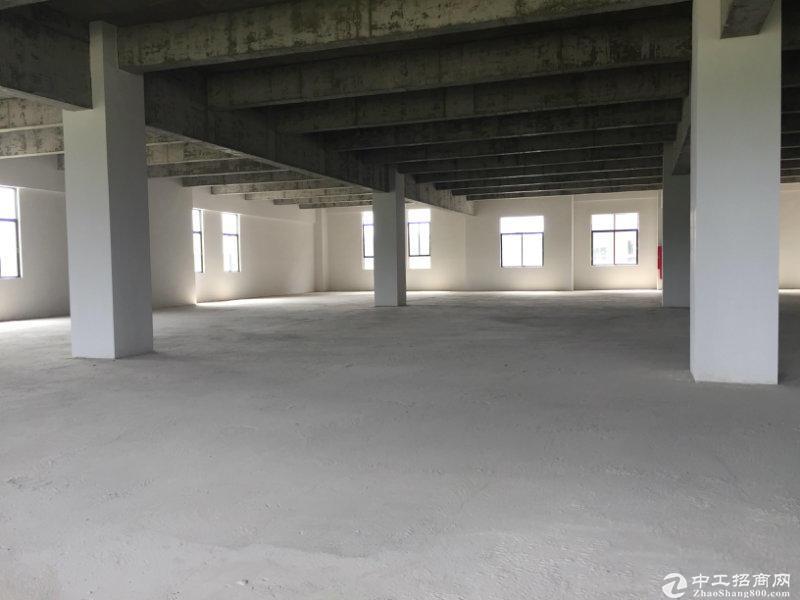 纳成广泰卫浴城全新独栋园区厂房出售-图3