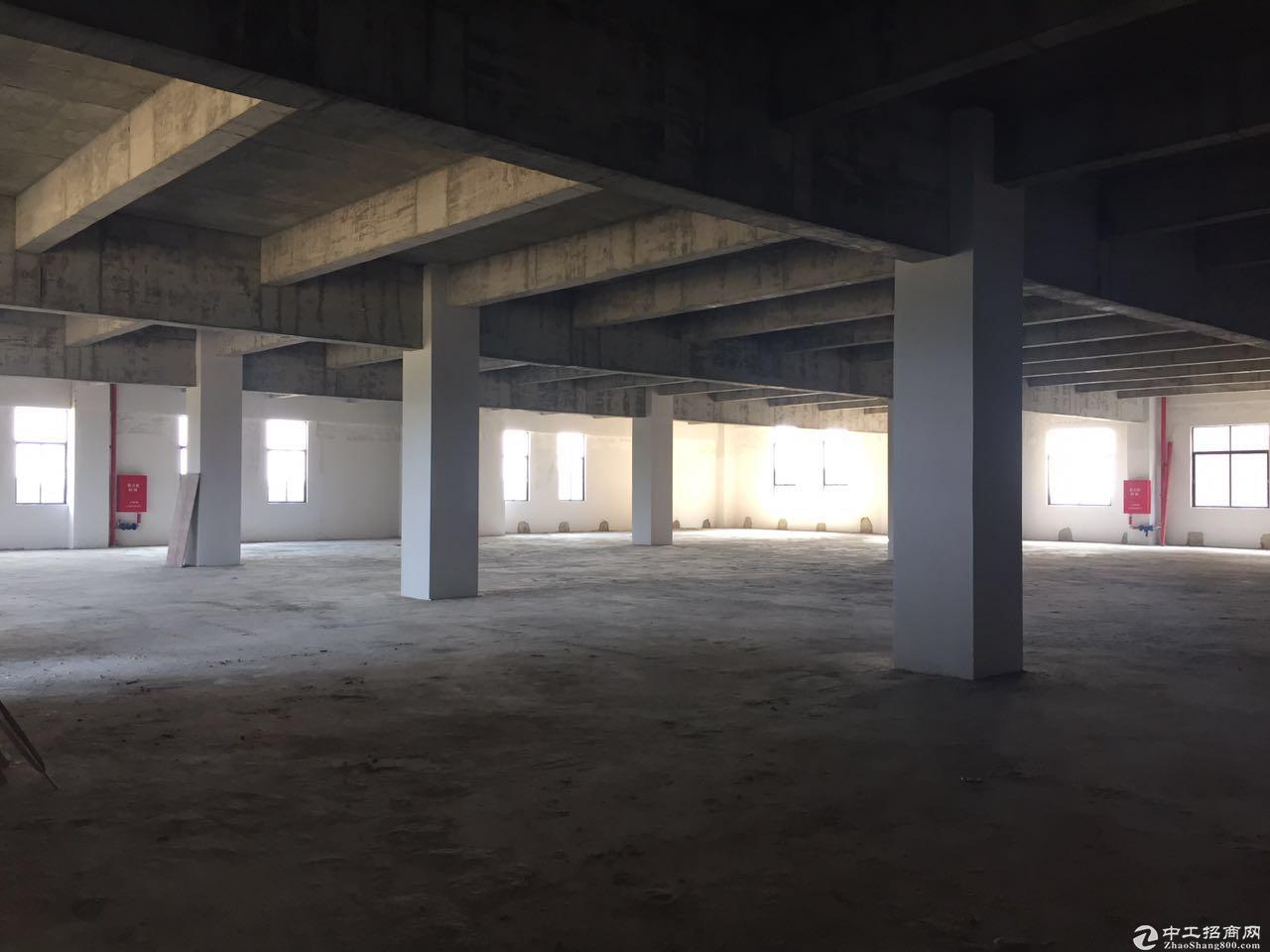 23000全新独栋园区厂房分割出售-图4