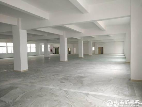 福永和平大型工业区楼上整层1200平米厂房招租