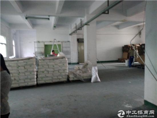 横沥镇独院村委合同厂房2600平米出售 占地3800㎡