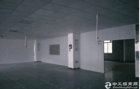 坪山碧岭 工业园新出楼上580平带 办公室