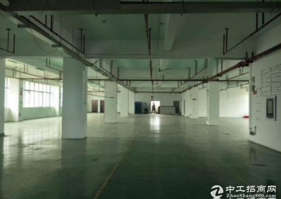 坪山高速出口原房东红本厂房楼上2000平 米