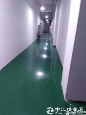 龙华新区豪华装修厂房出租900平带无尘车间消防喷