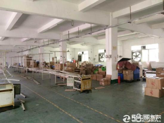 龙华大浪商业中心新出单层面积800平带装修