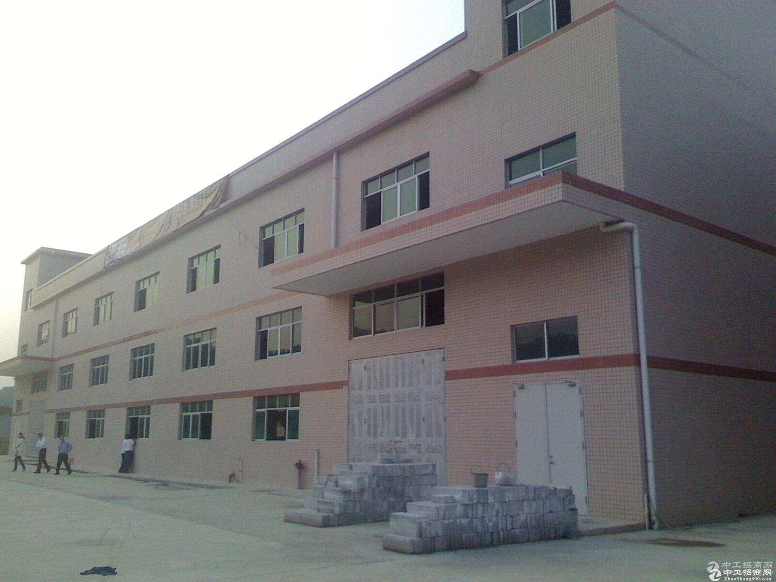 郫县小微产业园单层钢结构厂房出租!