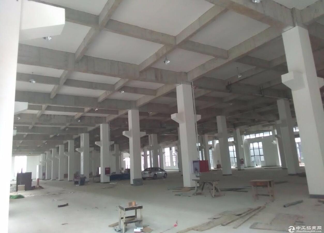 出租邛崃临邛工业园区标准食品房 总140000平