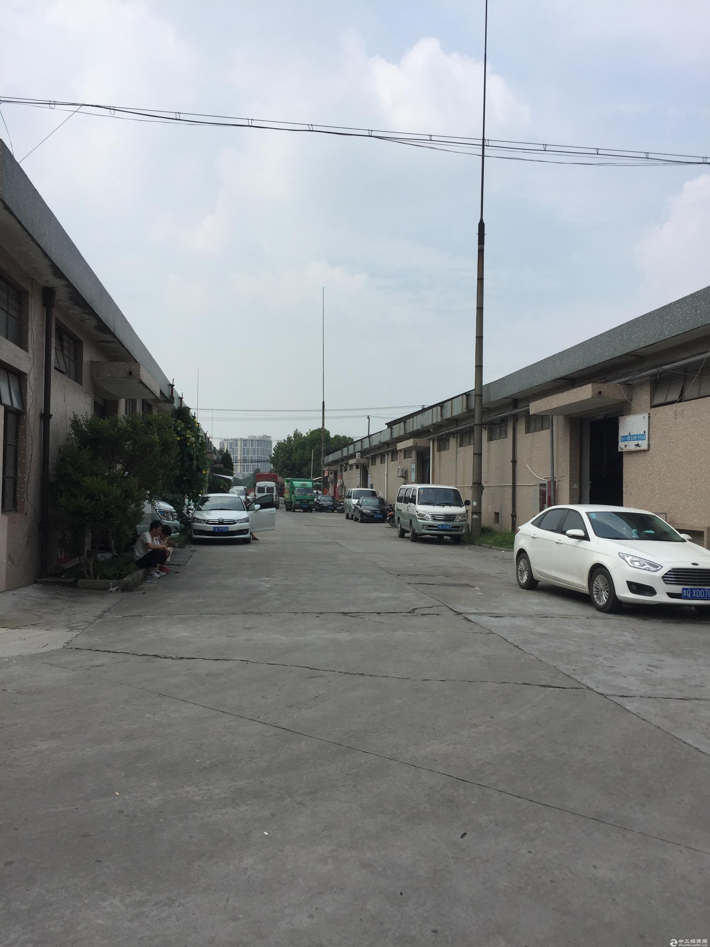 出租七宝九亭之间192平米标准仓库