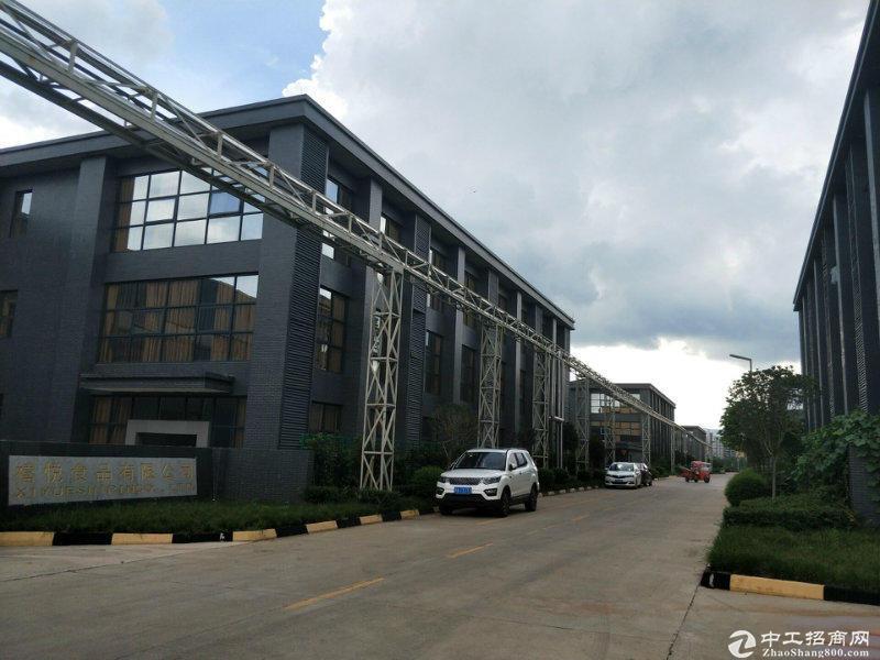 金堂100至10000平米工业园标准钢构厂房出租