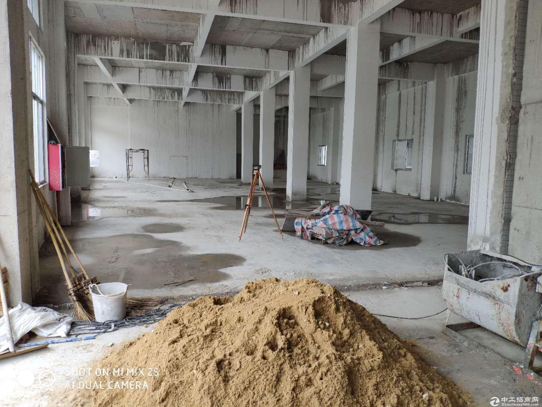 杜阮国道旁全新单一层厂房1830m²电按需空地1000方-图2