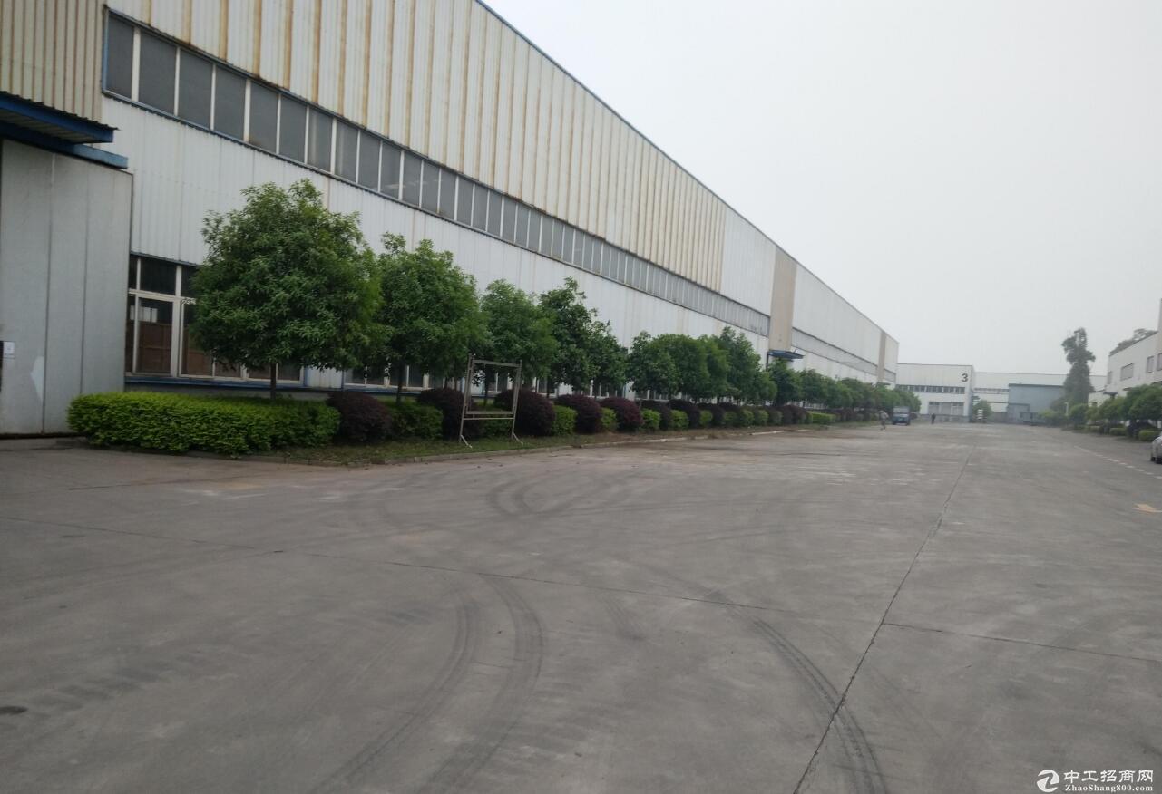 新津工业园A区1万平米可分租,带10T5T行
