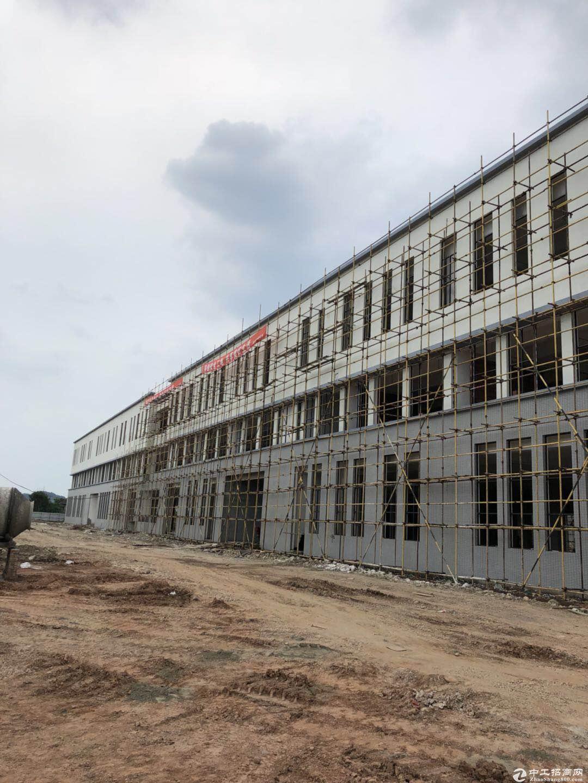 食药品孵化园,优质全钢结构厂房出租