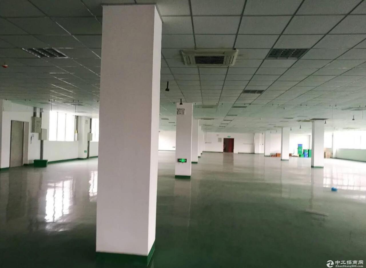 龙泉1400标准厂房出租,宜电子企业
