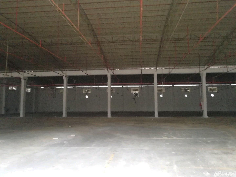 全新独院单层厂房 10451平米对外招租,可分租-图3