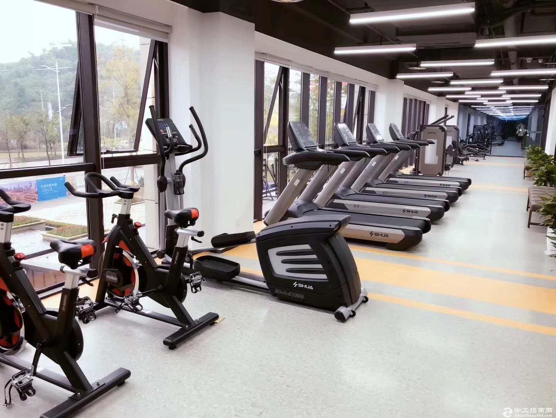 两江健康科技城独栋厂房租售-图5