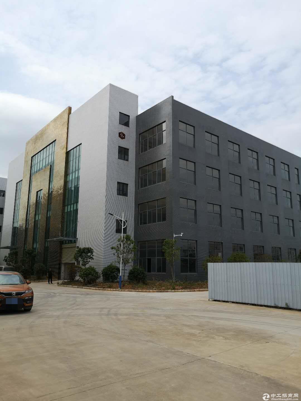 产业园标准厂房 一楼1400平方出租