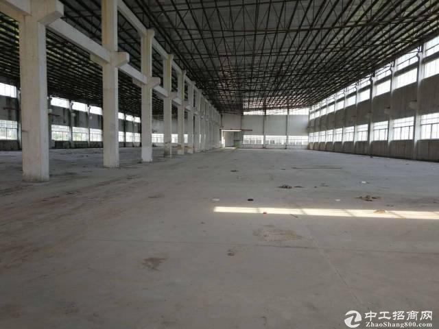 棠下全新7000平方米钢结构厂房出租
