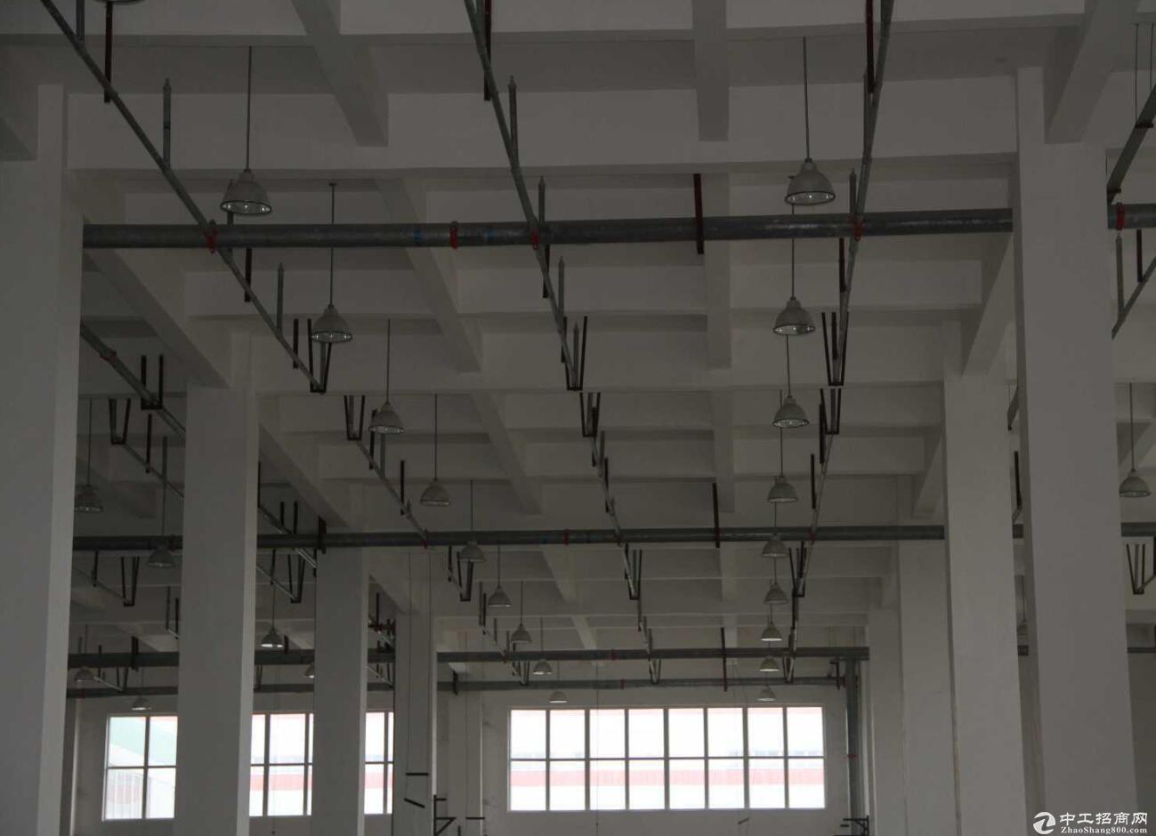 新科技大道小微园 厂房 2070平米