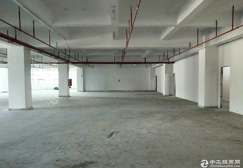 楼上399/750平方出租 可做贸易/办公/实验