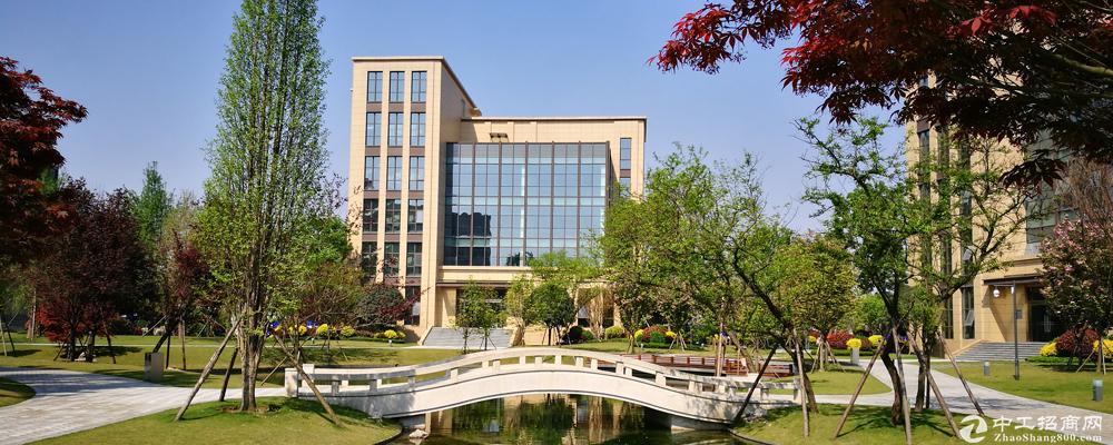 双流电子科大科技园,高端研发楼出租。