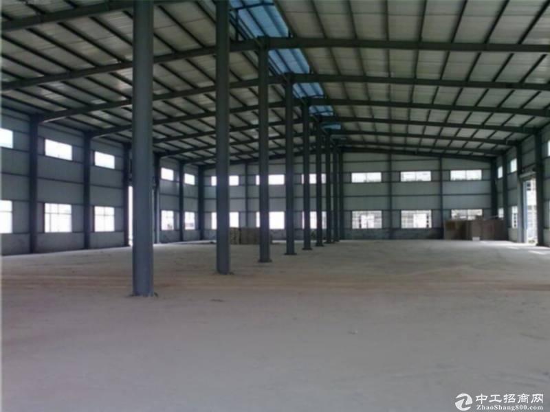 新华工业区全新20000方钢结构厂房招租,可分租