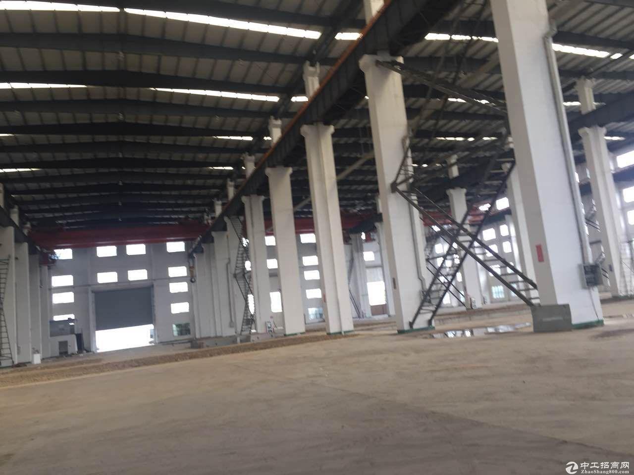 独门独院滨湖区15000平米单层12米高30行车厂房