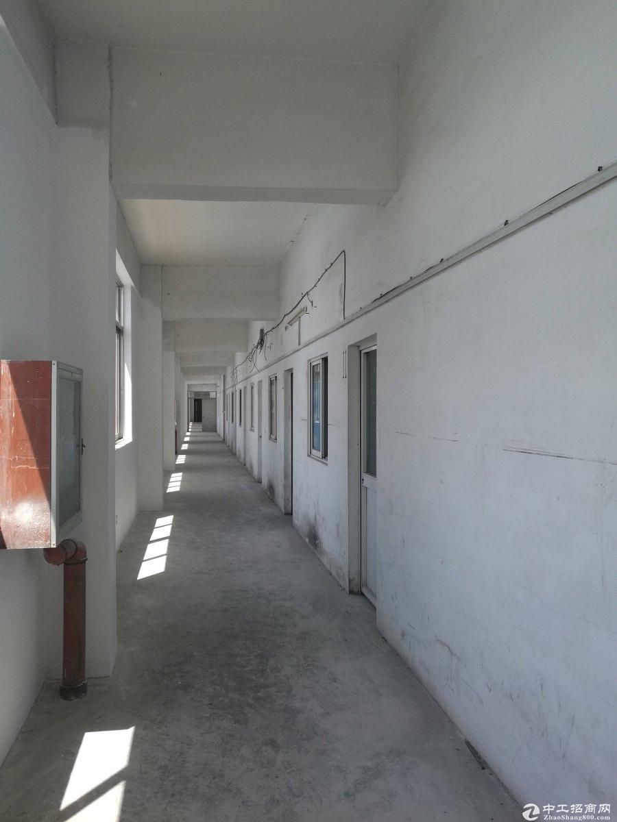 上海松江泗泾工业区独院占地11亩50年绿证8米生产厂房出售-图2