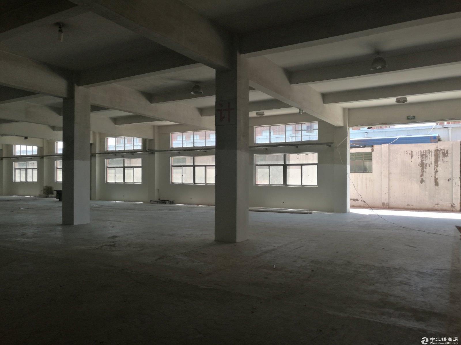 上海松江泗泾工业区独院占地11亩50年绿证8米生产厂房出售-图4