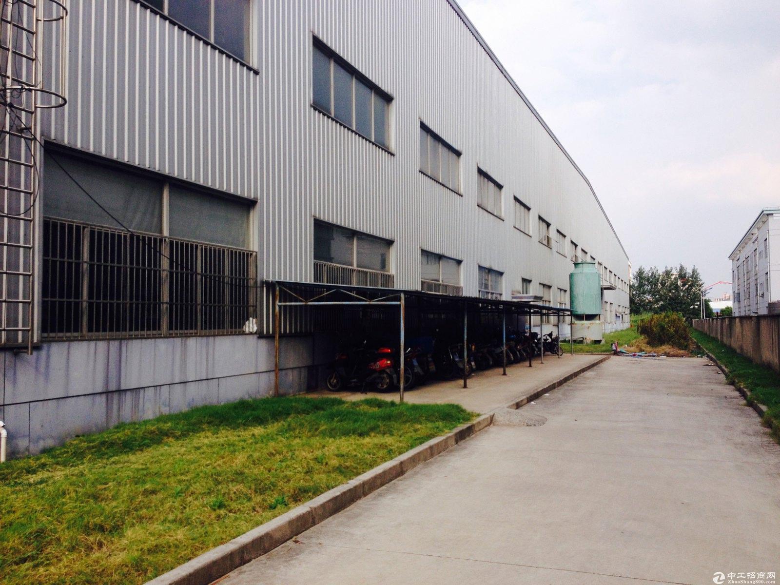 枫泾工业区独院21亩10米绿证50年104厂房出售-图2