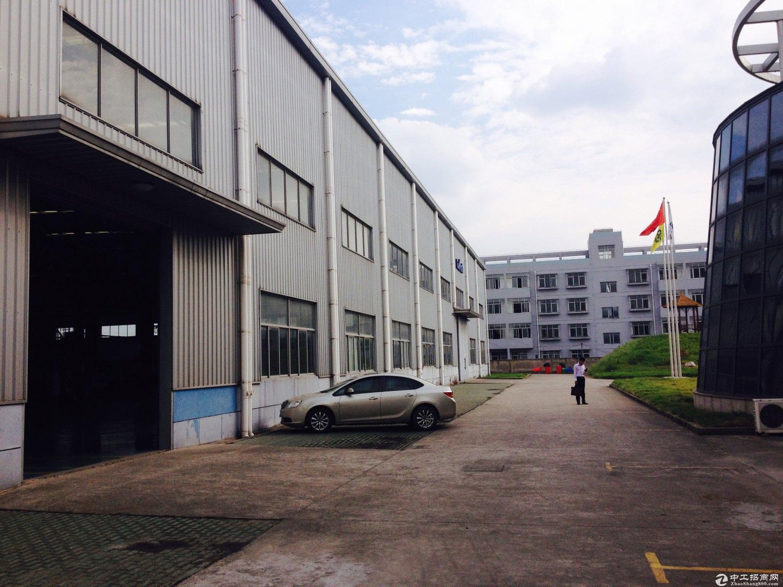 枫泾工业区独院21亩10米绿证50年104厂房出售-图3