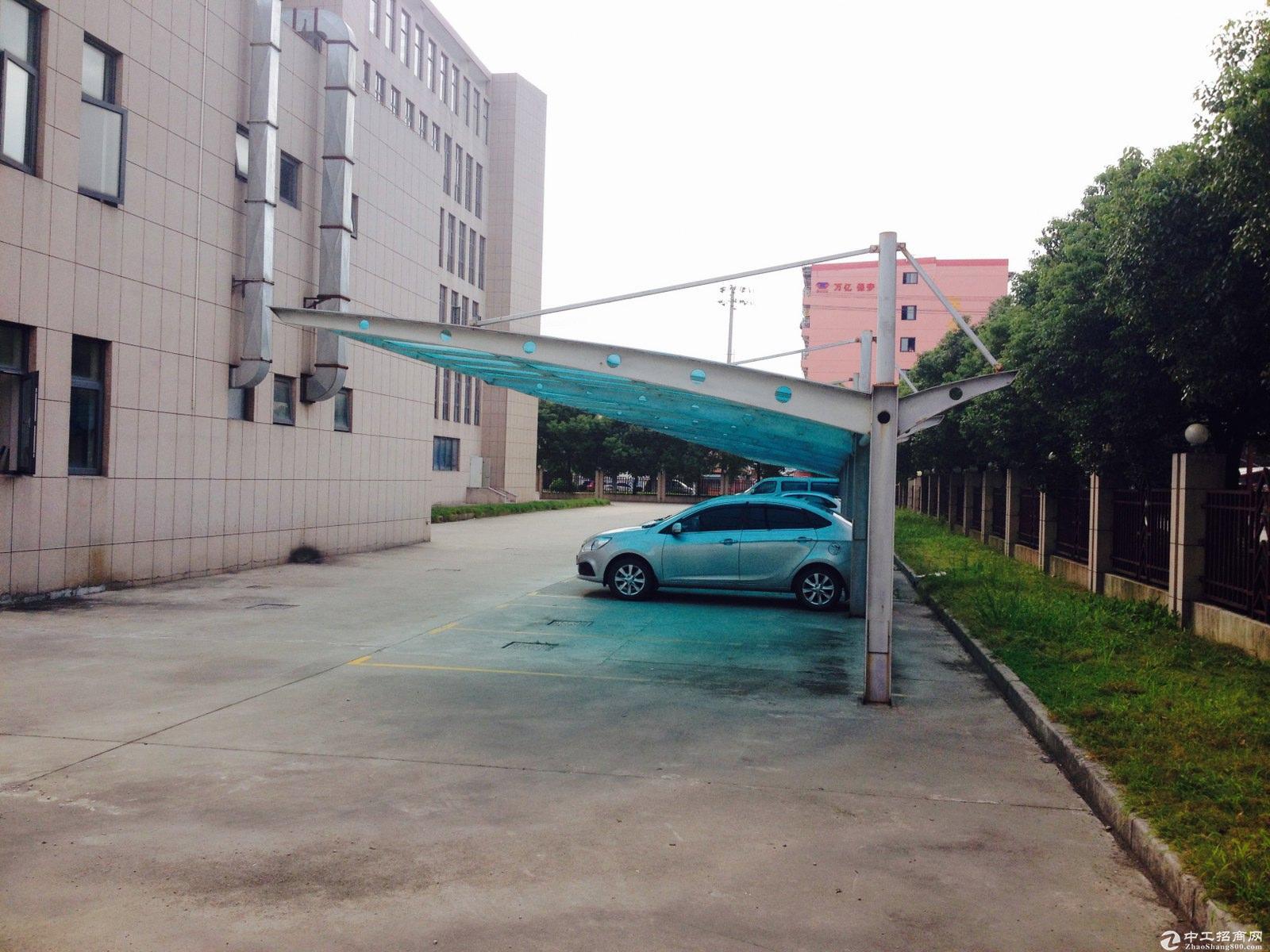 枫泾工业区独院21亩10米绿证50年104厂房出售-图4