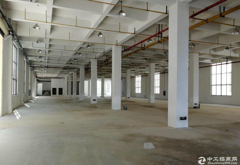 江夏大桥新区框架厂房800平出租