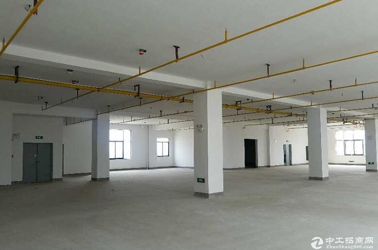 东湖高新出租厂房2000平米,配套齐全
