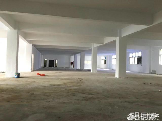坪山5年合同红本独院厂房4700平米出租