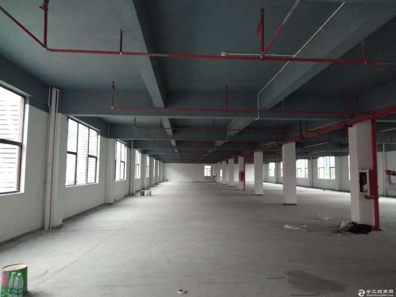 布吉地铁口便宜厂改写字楼3万平米100平米起分租