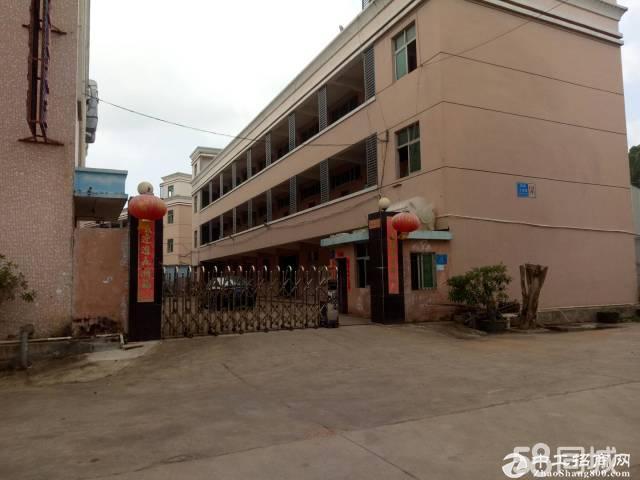 龙岗龙东原房东厂房一楼分租600平方